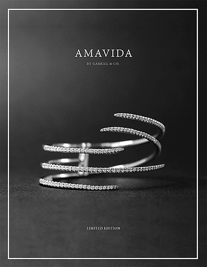 2016 Amavida Limited Edition Fashion Book