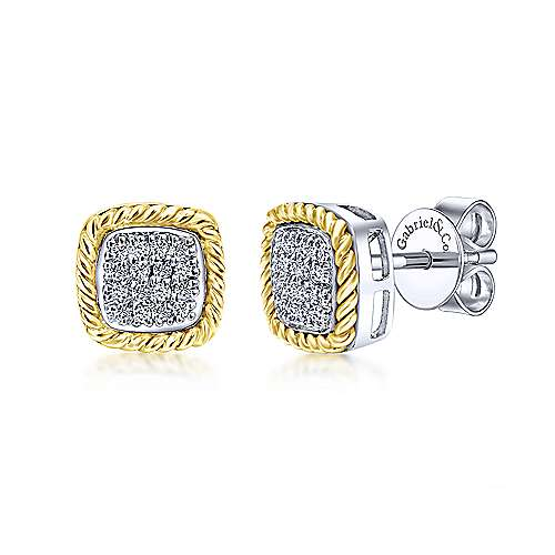 14k Yellow/white Gold  Stud