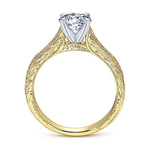 Audra 14k Yellow/white Gold Round Straight Engagement Ring angle 2