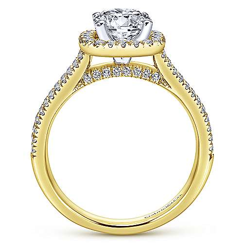 Brianna 14k Yellow And White Gold Round Halo Engagement Ring angle 2
