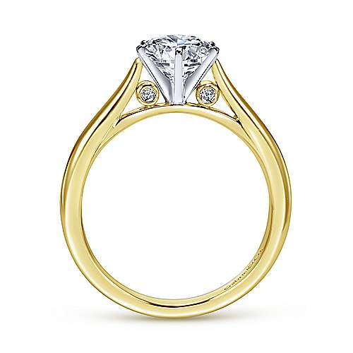 Cassie 14k Yellow And White Gold Round Solitaire Engagement Ring angle 2
