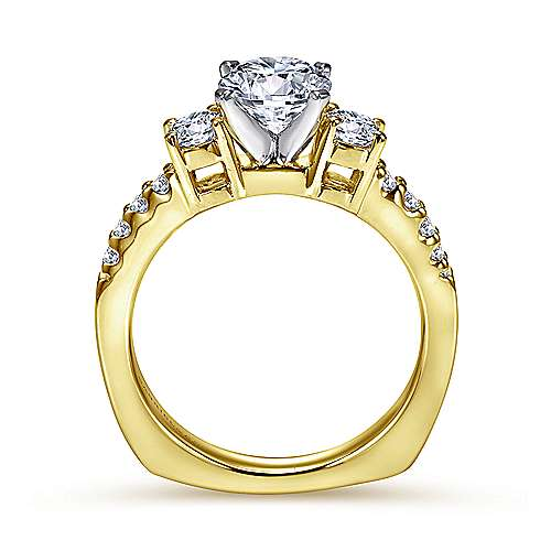 Chloe 14k Yellow And White Gold Round 3 Stones Engagement Ring angle 2