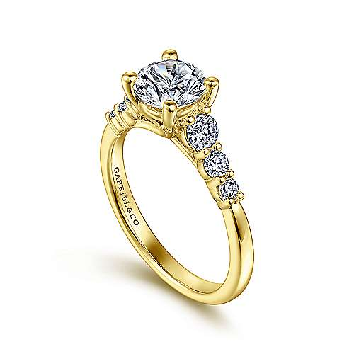 Darby 14k Yellow Gold Round Straight Engagement Ring angle 3