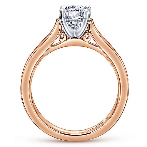 Jayden 14k White And Rose Gold Round Straight Engagement Ring angle 2