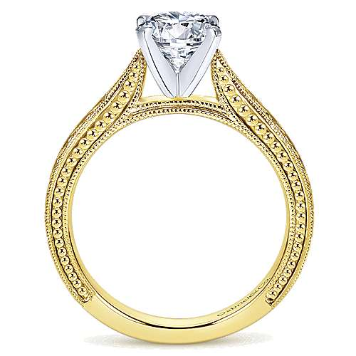 Maura 14k Yellow And White Gold Round Straight Engagement Ring angle 2