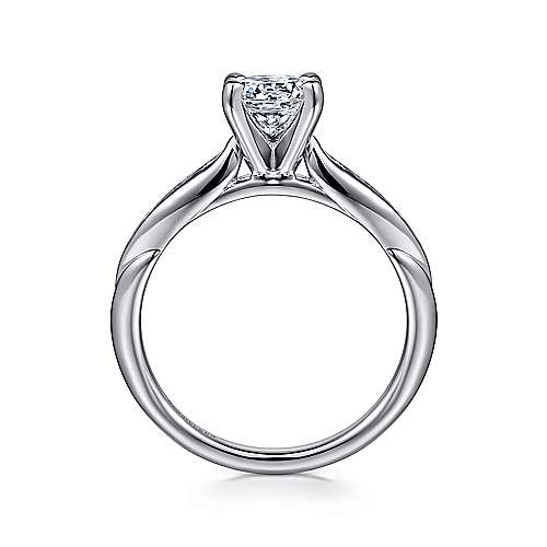 Quinn 14k White Gold Round Straight Engagement Ring angle 2