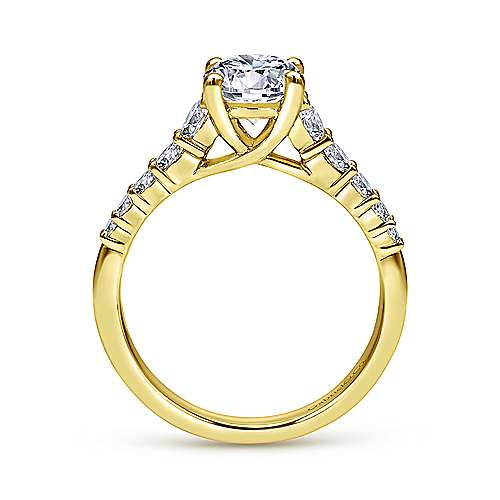 Reed 14k Yellow Gold Round Straight Engagement Ring angle 2