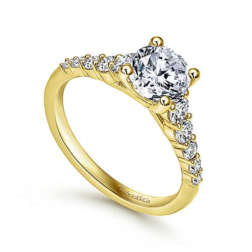 Reed 14k Yellow Gold Round Straight Engagement Ring angle 3
