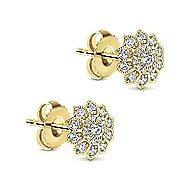 14k Yellow Gold Messier Stud Earrings