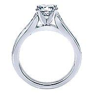 Dakota 14k White Gold Round Straight Engagement Ring angle 2