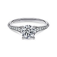 Hollis 14k White Gold Round Straight Engagement Ring angle 1