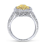 Silver-18K Yellow Gold  Fashion Ladies' Ring