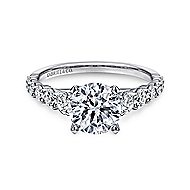 Taylor 14k White Gold Round Straight Engagement Ring angle 1